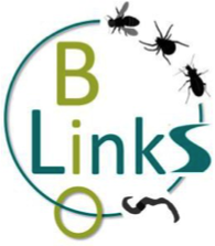 Bio LInks logo