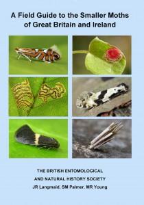 New_Micro-moth_Field_Guide